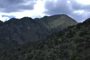 Chiricahua mtns